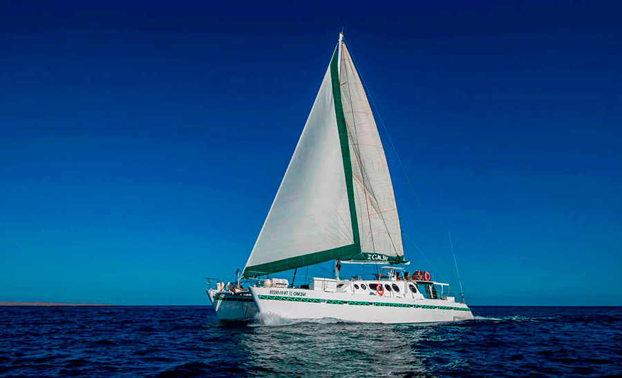 Nemo II catamaran galapagos
