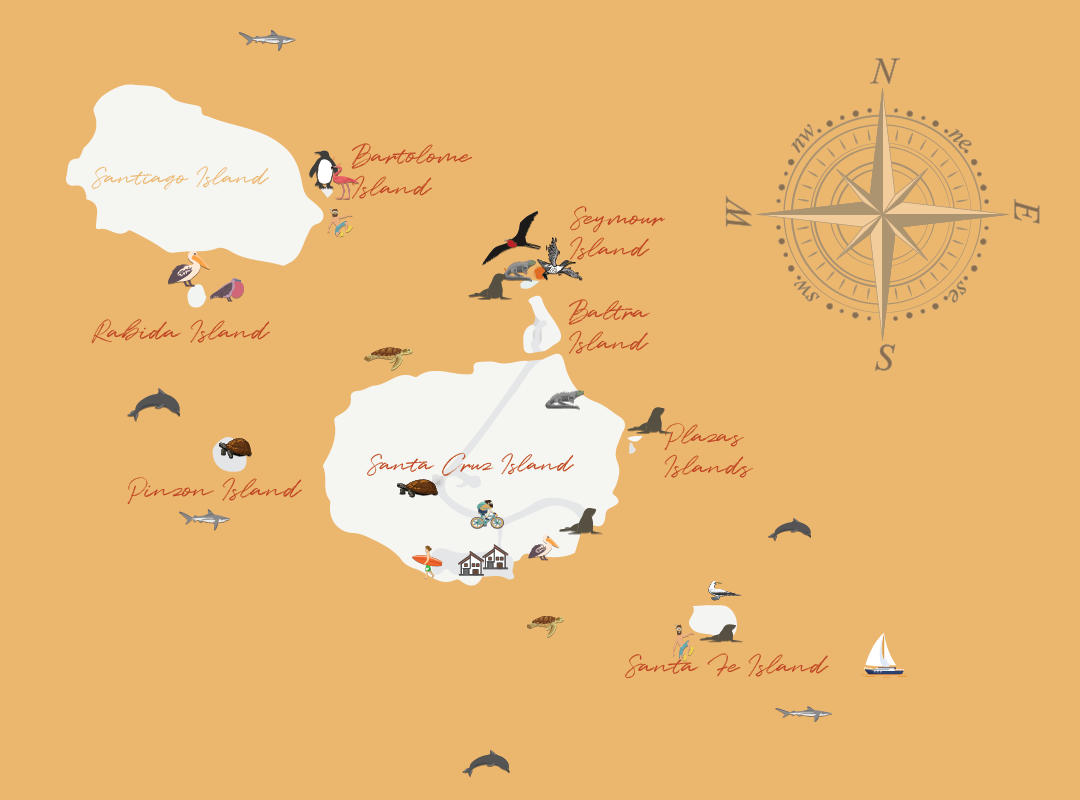 Mapa de tours diarios_Mesa de trabajo 1